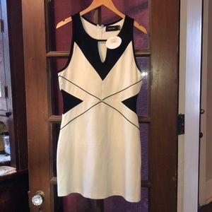 NWT- Black/white bodycon dress